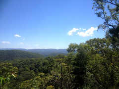 Countryside near Colo (SteveSeven77) Tags: australia nsw bluemountains hawkesbury trees sky summer