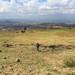 On the road, Ethiopia