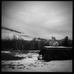 Another morning in Vermont (CTfoto2013) Tags:
