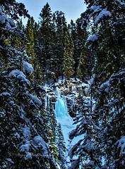 Blue Falls (Pbreezer) Tags: ice falls frozen nature climb outdoor outdoorphotography travelalberta naturephotography banff nationalparkcanada johnsonscanyon blueice trees mountains winter snow natures people photo canyon