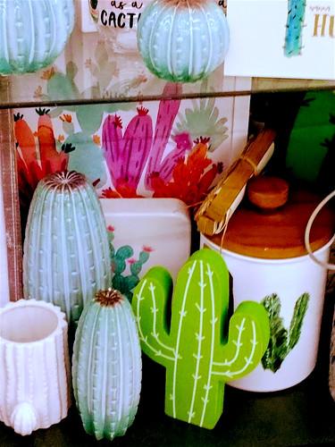 Cactus Spring