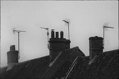 _DSC9345 (andy.sheppard) Tags: nikon d2x pentaxtakumar35mmf35 norfolk burnhammarket houses roofline aerials