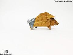 Testosterone Wild Boar - Barth Dunkan. (Magic Fingaz) Tags: barthdunkan ecorigami origami origamiwildboar paperart paperfolding sanglier wildboar wildschwein หมูป่า 야생멧돼지 イノシシ 野豬 pig origamipig