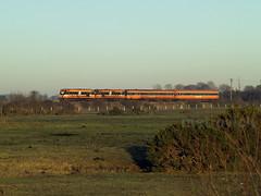 142 & 144 south of Cherryville Junction 061208 (metrovick) Tags: irishrail iarnrodeireann ie141class 142 144 railroad railway railwaykildare emd enterpriseloco jl8 mk3 brelmk3 railtour
