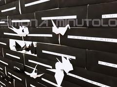 Opera di Osvaldo Gaiotto - Paratissima 2018 Torino (Scheggya2) Tags: osvaldogaiotto paratissima2018 paratissima origami art italianart contemporaryart