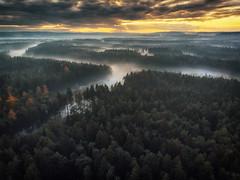 What I prefer... (der_peste (on/off)) Tags: fall autumn mist fog landscape sky sunset trees forest woods river drone