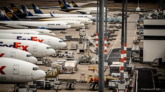 _MG_6948 (okoekluek) Tags: airplane industry aircraft transportationsystem business air shipment travel technology large departure commerce jet airport commercial flight international traffic vehicle