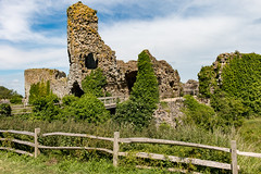 Pevensey Castle ruins (Keith in Exeter) Tags: pevensey castle ruins norman fort architecture building tower moat bridge fence stonework tree bush grass ivy sky english heritage