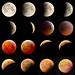 Lunar eclipse 190121.jpg