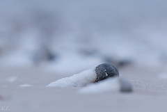 Snow Stone (Kim Eisele) Tags: helgoland insel makro südstrand schnee