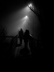 silhouettes (Darek Drapala) Tags: silhouette silkypix panasonic poland polska panasonicg5 park night bw blackwhite blackandwhite dark path lumix light city urban