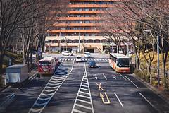 在東京唯一看到陽光的一天 (M.K. Design) Tags: japan tokyo shinjuku street snapshot nature hdr sunshine nikon nikkor zmount z6 mirrorless mirrorlesscamera milc sigma 50mm f14 bokeh art primelens travel life family landscape scenery 日本 東京 新宿 中央公園 東京都廳 都庁 風景 自然 街拍 路 尼康 無反 無反光鏡相機 適馬 大光圈 定焦鏡 淺景深 散景 親子 自由行 自助旅行