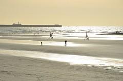 La plage de Wimereux (RarOiseau) Tags: wimereux pasdecalais hautsdefrance plage mer sable v2000 beach sand sea lumière