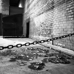 Alley (tim.perdue) Tags: alley dark night light brick wall chain dumpster leaves doorway deserted empty black white bw monochrome instagram iphone mobile iphoneography monovember 2018 monovember2018 square downtown urbam city decay