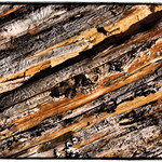 Abstrakte Kunst in der Natur / abstract art in Nature thumbnail