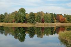 Last days of autumn (Sockenhummel) Tags: britzergarten spiegelbild spiegelung fuji xt10 bäume trees park garten wald herbst autumn fall grünberlin indiansummer see lake wasser reflection goldenerherbst