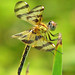 a golden Halloween pennant