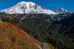 Mount Rainier (jeff's pixels) Tags: mountrainiernationalpark mountrainier stephenscanyon mountain trail hiking road driving volcano outdoors nikon nikkor pnw washington