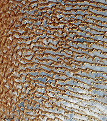 The Rub' al Khali, one of the largest sand deserts in the world, encompassing most of the southern third of the Arabian Peninsula. Original from NASA. Digitally enhanced by rawpixel.