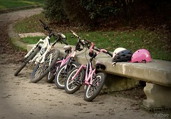 Parada y fonda (Franco D´Albao) Tags: panasonicdmcfz30 lumix francodalbao dalbao bicicletas bikes banco bench cascos helmets parque park stop parada