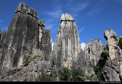Shilin Stone Forest, Shilin, Yunnan, China (JH_1982) Tags: shilin stone forest 石林 naigu 乃古石林 karst mountains unesco world heritage site national scenic area 昆明市石林风景区 大小石林 李子菁石林 limestone steinwald pillar rock fels nature natur landscape scenery kalkstein caliza calcaire 윈난스린 石林彝族自治县 yunnan 云南 雲南省 윈난성 юньнань peoples republic china prc chine cina 中国 中國 中华人民共和国 중화인민공화국 китайская народная республика
