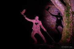 L'homme et son oiseau (christian.rey) Tags: murten licht festival lumières 2019 homme oiseau coeur ombre arbre sony alpha a7r2 a7rii 24105