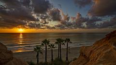 Alumbrando las seis palmeras (Fotgrafo-robby25) Tags: alicante amanecer costablanca marmediterráneo nubes palmeras sol sonyilce7rm3