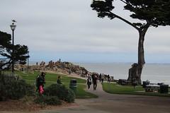 IMG_10919 (mudsharkalex) Tags: california pacificgrove pacificgroveca loverspointpark