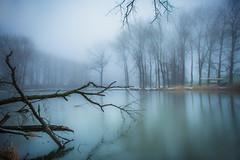 Fingertip touch (Ingeborg Ruyken) Tags: sneeuw morning empel mist instagram 500pxs fog natuurfotografie ochtend flickr snow