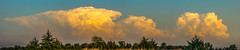 050212 - Nebraska Sunset Thunderheads 042 (Pano) (NebraskaSC Severe Weather Photography Videography) Tags: flickr nebraskasc dalekaminski nebraskascpixelscom wwwfacebookcomnebraskasc stormscape cloudscape landscape nebraska weather nature awesomenature storm clouds cloudsday cloudsofstorms cloudwatching stormcloud daysky weatherphotography photography photographic weatherspotter chase chasers newx wx weatherphotos weatherphoto day sky magicsky darksky darkskies darkclouds stormyday stormchasing stormchasers stormchase skywarn skytheme skychasers stormpics southcentralnebraska orage tormenta light vivid watching dramatic outdoor cloud colour amazing beautiful thunderheads stormviewlive svl svlwx svlmedia svlmediawx