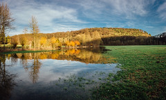 Along the Enz River (freyavev) Tags: enz enzradweg reflections sunset lake river landscape unterriexingen deutschland germany badenwürttemberg mikasniftyfifty canon outdoor nature canon700d panorama water