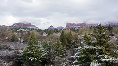 Dusting on red and green (Francoise100) Tags: cold outdoor desertsouthwest america travel usa hiver winter sedona az arizona mountains red rot rouge rocks felsen snow schnee neige pines trees arbres