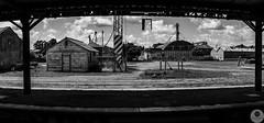 Azul Train (pusadolfo) Tags: argentina azul baf buenosaires buenosairesfotografia cachari cementary cementerio estrellas gauchos girasol horses lightpainting monasterio monastery pardo people rider riders smalltown stars sunflower train tren