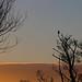 standing alone - Riverside Valley Park, Exeter, Devon - Jan 2019