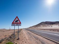 P1107945-LR (carlo) Tags: panasonic g9 dmcg9 africa africanlandscape namibia deserthighway stradaneldeserto desert deserto