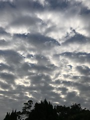 all cloudy (光輝蘇) Tags: morning cloudy sky kk