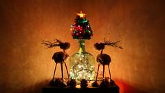 Árbol Navideño 1 (hunte77) Tags: navidad lucesdenavidad botella decoracion merry chrismas