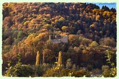 Ruines du Hugstein dans son écrin automnal (jamesreed68) Tags: alsace 68 hautrhin grandest france ruines hugstein florival buhl paysage nature patrimoine
