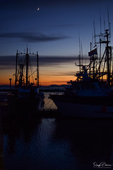 Steveston Harbour Sunset (SonjaPetersonPh♡tography) Tags: steveston harbour fishingboats vessels ships richmond bc britishcolumbia canada sunset silhouettes silhouette stevestonvillage stevestonfishingvillage stevestonwharf stevestonharbour fraserriver boats pier wharf floatingwharf fishermanswharf fishing water river riverscape waterscape waterfront