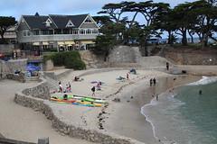 IMG_10915 (mudsharkalex) Tags: california pacificgrove pacificgroveca loverspointpark loverspointbeach beach