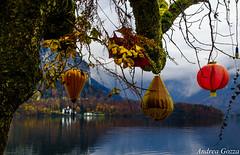Hallstatt (Austria) (andrea.gozza) Tags: hallstat austria lanterne autunm lake tree