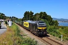 Caminha (REGFA251013) Tags: medway mercadorias mercancias madera tren train comboio portugal seixas caminha renfe riomiño minho linhadominho