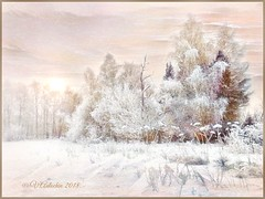 Winter landscape. (odinvadim) Tags: painterly textured iphoneart iphone iphoneography iphoneonly forest evening painterlymobileart frost snapseed textures icolorama winter travel iphonex editmaster landscape