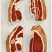 Beef Sirloin from the book, The Grocer's Encyclopedia (1911). Digitally enhanced from our own antique plate.