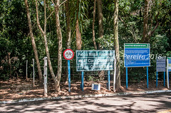 Bosque Municipal Rangel Pietraroia (W. Pereira) Tags: brasil brazil sampa sãopaulo wpereira wanderleypereira bosque bosquemunicipal maríliasp nikon parque rangelpietraroia wpereiraafotografias wanderleypereirafotografias