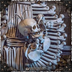 This is a sample of some new things we are trying out with our photography. What do you think? Let us know in the comments. . 💀Turn on post notifications, click link in BIO to follow along on our journey, and sign up on our mailing list at: ☩ sedlec (Sedlec Ossuary Project) Tags: sedlecossuaryproject sedlec ossuary project sedlecossuary kostnice kutnahora kutna hora prague czechrepublic czech republic czechia churchofbones church bones skeleton skulls humanbones human mementomori memento mori creepy travel macabre death dark historical architecture historicpreservation historic preservation landmark explore unusual mechanicalwhispers mechanical whispers instagram ifttt