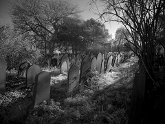 York cemetery (Johnson Cameraface) Tags: 2018 december autumn olympus omde1 em1 micro43 mzuiko 1240mm f28 johnsoncameraface yorkshire yorkcemetery cemetery graveyard graves headstone northyorkshire infrared monochrome blackandwhite