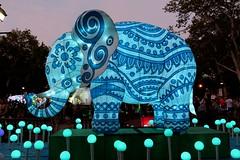 Enlightened Elephant (Jane Inman Stormer) Tags: elephant lantern pattern indian orb glow ears dusk festival philadelphia blue