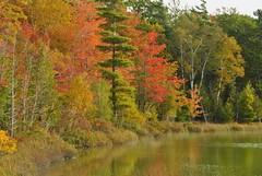 Autumn in Michigan... (jrmcmellen) Tags:
