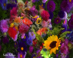 Romance (brillianthues) Tags: flowers floral flower nature garden colorful collage photography photmanuplation photoshop